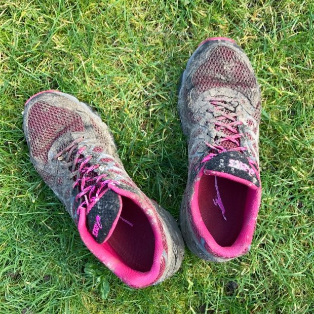 My trainers the day after the run...