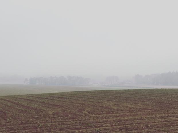 A misty beginning